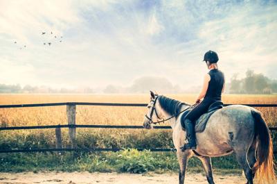 Horse_Slowmo